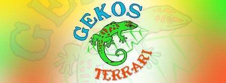 GEKOS TERRARI